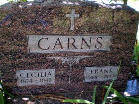 CARNS, CECILIA - Craighead County, Arkansas | CECILIA CARNS - Arkansas Gravestone Photos