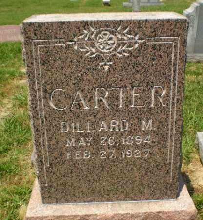 CARTER, DILLARD M - Craighead County, Arkansas | DILLARD M CARTER - Arkansas Gravestone Photos