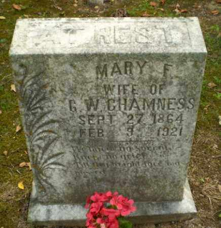 CHAMNESS, MARY F. - Craighead County, Arkansas | MARY F. CHAMNESS - Arkansas Gravestone Photos