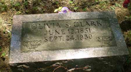 CLARK, OLIVIA S - Craighead County, Arkansas | OLIVIA S CLARK - Arkansas Gravestone Photos