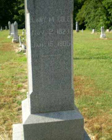 COLE, LARY M - Craighead County, Arkansas | LARY M COLE - Arkansas Gravestone Photos