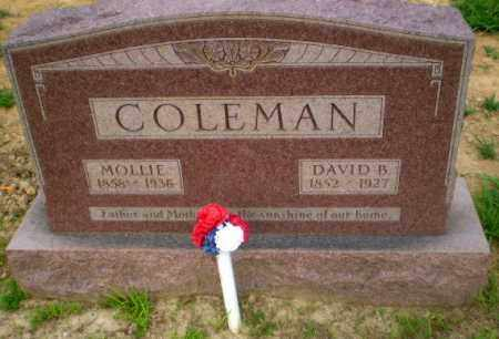 COLEMAN, DAVID B - Craighead County, Arkansas | DAVID B COLEMAN - Arkansas Gravestone Photos