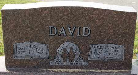 DAVID, AMOS - Craighead County, Arkansas | AMOS DAVID - Arkansas Gravestone Photos