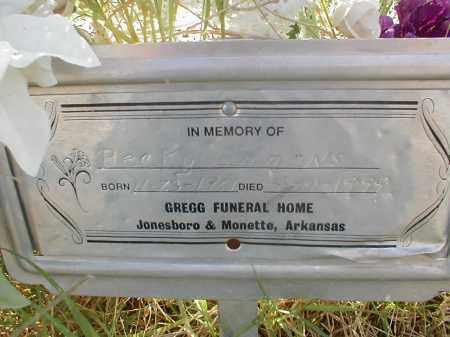 EMMONS, BECKY - Craighead County, Arkansas | BECKY EMMONS - Arkansas Gravestone Photos