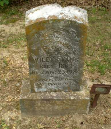 EVANS, WILEY - Craighead County, Arkansas | WILEY EVANS - Arkansas Gravestone Photos