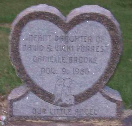 FORREST, DANIELLE BROOKE - Craighead County, Arkansas | DANIELLE BROOKE FORREST - Arkansas Gravestone Photos