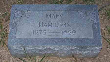 HAMILTON, MARY - Craighead County, Arkansas | MARY HAMILTON - Arkansas Gravestone Photos
