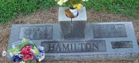 HAMILTON, WALTER J. - Craighead County, Arkansas | WALTER J. HAMILTON - Arkansas Gravestone Photos