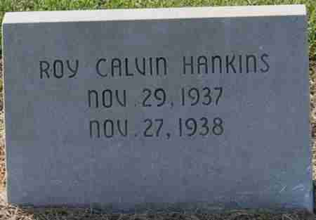 HANKINS, ROY CALVIN - Craighead County, Arkansas | ROY CALVIN HANKINS - Arkansas Gravestone Photos