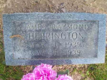 HERRINGTON, JAMES RAYMOND - Craighead County, Arkansas | JAMES RAYMOND HERRINGTON - Arkansas Gravestone Photos