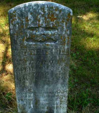 HILL, A. TANNE - Craighead County, Arkansas | A. TANNE HILL - Arkansas Gravestone Photos