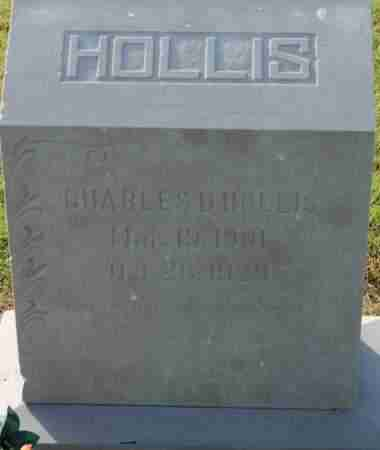 HOLLIS, CHARLES D - Craighead County, Arkansas | CHARLES D HOLLIS - Arkansas Gravestone Photos