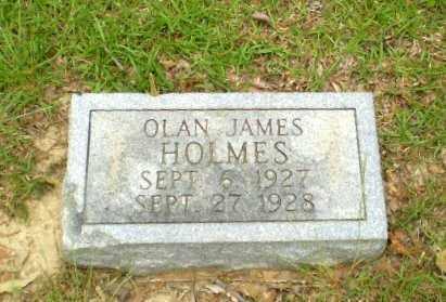 HOLMES, OLAN JAMES - Craighead County, Arkansas | OLAN JAMES HOLMES - Arkansas Gravestone Photos