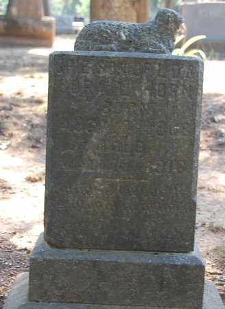 HORN, OPIE - Craighead County, Arkansas | OPIE HORN - Arkansas Gravestone Photos