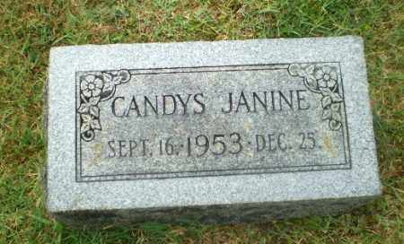 JAMES, CANDYS JANINE - Craighead County, Arkansas | CANDYS JANINE JAMES - Arkansas Gravestone Photos