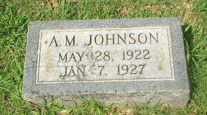 JOHNSON, A.M. - Craighead County, Arkansas | A.M. JOHNSON - Arkansas Gravestone Photos