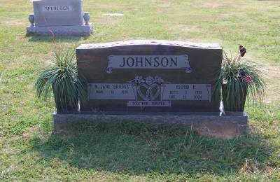 JOHNSON, FLOYD - Craighead County, Arkansas | FLOYD JOHNSON - Arkansas Gravestone Photos