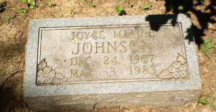 JOHNSON, JOYCE MAXINE - Craighead County, Arkansas | JOYCE MAXINE JOHNSON - Arkansas Gravestone Photos