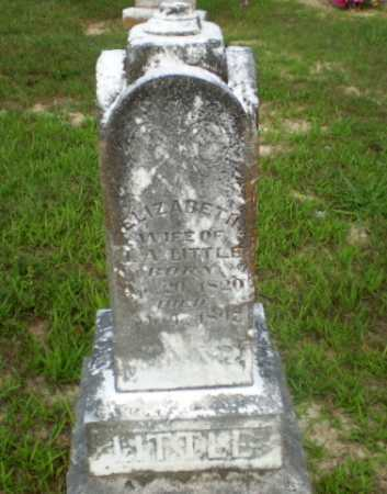 LITTLE, ELIZABETH - Craighead County, Arkansas | ELIZABETH LITTLE - Arkansas Gravestone Photos