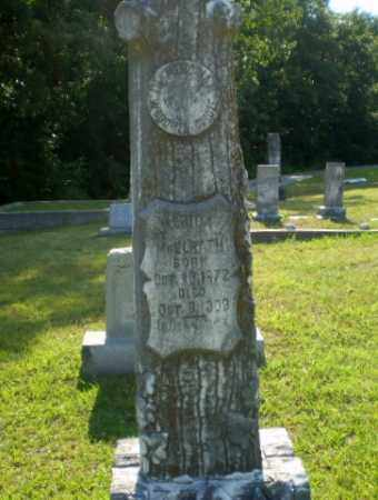 MCELRATH, AMERICA - Craighead County, Arkansas | AMERICA MCELRATH - Arkansas Gravestone Photos