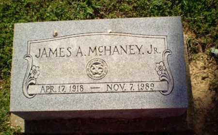 MCHANEY, JAMES A - Craighead County, Arkansas | JAMES A MCHANEY - Arkansas Gravestone Photos