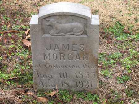 MORGAN, JAMES - Craighead County, Arkansas | JAMES MORGAN - Arkansas Gravestone Photos