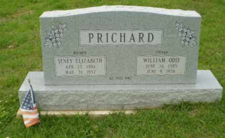 PRICHARD, SENEY ELIZABETH - Craighead County, Arkansas | SENEY ELIZABETH PRICHARD - Arkansas Gravestone Photos