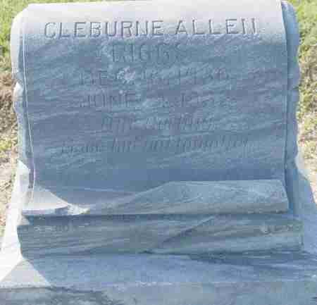 RIGGS, CLEBURNE ALLEN - Craighead County, Arkansas | CLEBURNE ALLEN RIGGS - Arkansas Gravestone Photos