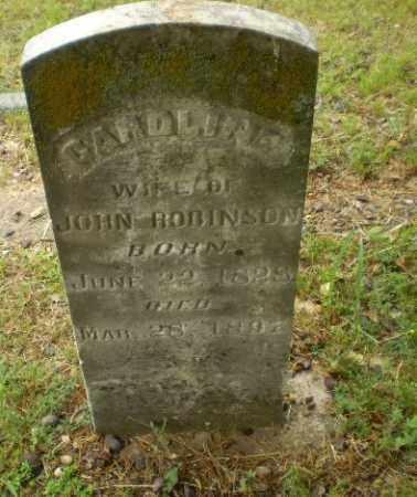 ROBINSON, CAROLINE - Craighead County, Arkansas | CAROLINE ROBINSON - Arkansas Gravestone Photos