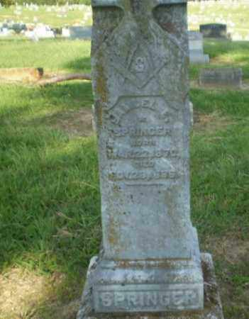 SPRINGER, SAMUEL E - Craighead County, Arkansas | SAMUEL E SPRINGER - Arkansas Gravestone Photos