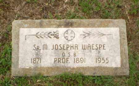 WAESPE, SISTER M. JOSEPHA - Craighead County, Arkansas | SISTER M. JOSEPHA WAESPE - Arkansas Gravestone Photos