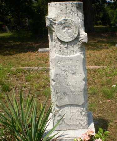 WATKINS, CURLIE C - Craighead County, Arkansas | CURLIE C WATKINS - Arkansas Gravestone Photos