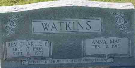 WATKINS, CHARLIE P. - Craighead County, Arkansas | CHARLIE P. WATKINS - Arkansas Gravestone Photos