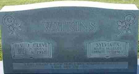 WATKINS, J. CLEVE - Craighead County, Arkansas | J. CLEVE WATKINS - Arkansas Gravestone Photos
