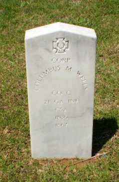 WELLS (VETERAN CSA), COLUMBUS M. - Craighead County, Arkansas | COLUMBUS M. WELLS (VETERAN CSA) - Arkansas Gravestone Photos