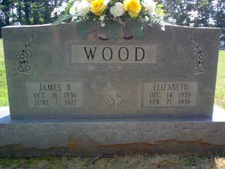 WOOD, ELIZABETH - Craighead County, Arkansas | ELIZABETH WOOD - Arkansas Gravestone Photos