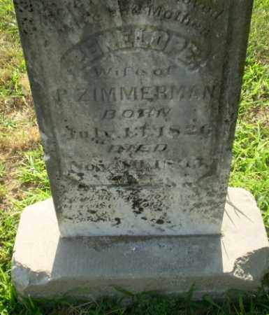 ZIMMERMAN, PENELOPE - Craighead County, Arkansas | PENELOPE ZIMMERMAN - Arkansas Gravestone Photos