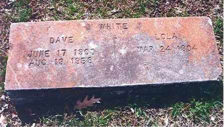 WHITE, WILLIAM DAVID - Craighead County, Arkansas | WILLIAM DAVID WHITE - Arkansas Gravestone Photos