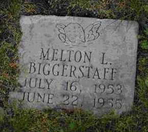 BIGGERSTAFF, MELTON L. - Crawford County, Arkansas | MELTON L. BIGGERSTAFF - Arkansas Gravestone Photos