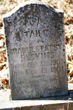 BLEVINS, UTAH C. - Crawford County, Arkansas | UTAH C. BLEVINS - Arkansas Gravestone Photos