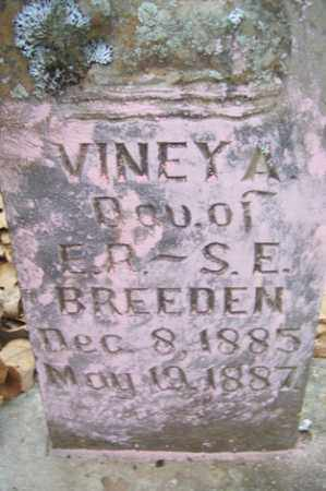 BREEDEN, VINEY A - Crawford County, Arkansas | VINEY A BREEDEN - Arkansas Gravestone Photos
