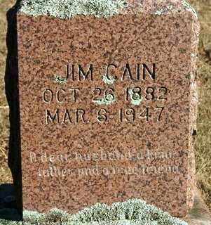 CAIN, JIM - Crawford County, Arkansas | JIM CAIN - Arkansas Gravestone Photos