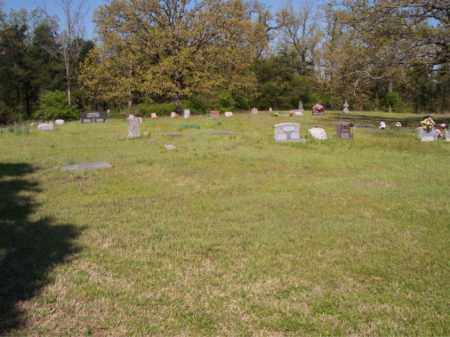 *CHASTAIN  OVERVIEW,  - Crawford County, Arkansas |  *CHASTAIN  OVERVIEW - Arkansas Gravestone Photos