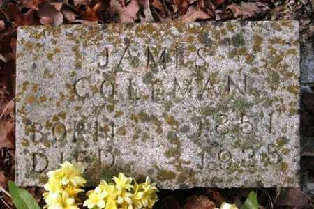 COLEMAN, JAMES - Crawford County, Arkansas | JAMES COLEMAN - Arkansas Gravestone Photos