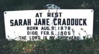 IRELAND CRADDUCK, SARAH JANE - Crawford County, Arkansas | SARAH JANE IRELAND CRADDUCK - Arkansas Gravestone Photos