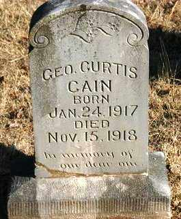 CURTIS, GEORGE - Crawford County, Arkansas | GEORGE CURTIS - Arkansas Gravestone Photos