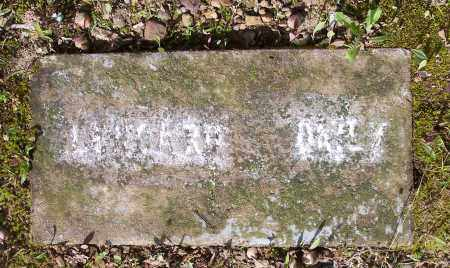DAILY, LEONARD - Crawford County, Arkansas | LEONARD DAILY - Arkansas Gravestone Photos