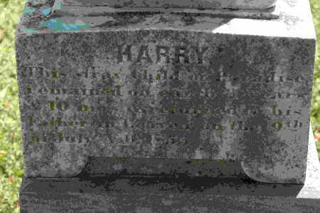 DIBRELL, HARRY (CLOSEUP) - Crawford County, Arkansas | HARRY (CLOSEUP) DIBRELL - Arkansas Gravestone Photos