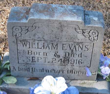 EVANS, WILLIAM - Crawford County, Arkansas | WILLIAM EVANS - Arkansas Gravestone Photos