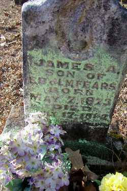 FEARS, JAMES A - Crawford County, Arkansas | JAMES A FEARS - Arkansas Gravestone Photos